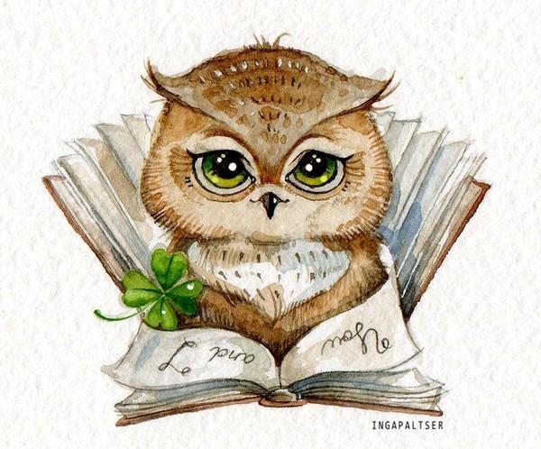 owl_600x498_053