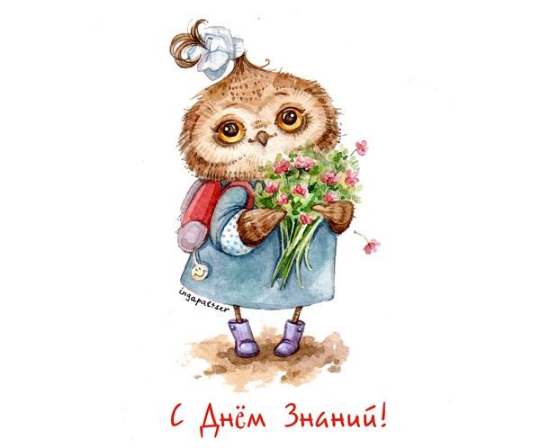 owl_600x498_065